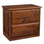 Kingston 2-Drawer Lateral File Cabinet