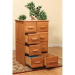 Double Vertical File Cabinet
